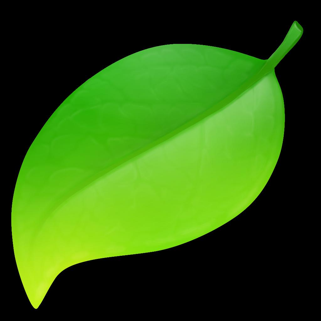 Time for Apple Development - Swift - AppleScript - Filemaker and
